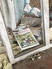 010 - Tschernobyl 2017 - iPhone (uwebrodrecht) Tags: tschernobyl chernobyl pripjat ukraine atom uwe brodrecht