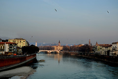 Lost among a million changing faces (1946pixels) Tags: italy nikon nikond3100 d3100 january verona views view river city cityscape sky beautiful buildings bridge blue europe travel trip travelling