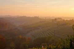 Golden Hues (Rae-J09) Tags: slovenia jeruzalem sunset glow vineyards wineries landscape haze fog golden fall autumn beautiful gorgeous canon 7d 1635mm hills
