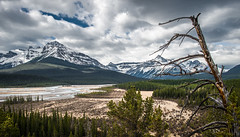Trip down the Icefields Parkway (Glyn8) Tags: snow canada mountains reflection water parkway banff icefields