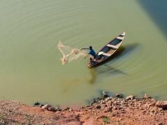 Jogando a rede (nerifisio) Tags: brasil landscape paisagem pescador amazonas blinkagain panasonicfz47 me2youphotographylevel2 me2youphotographylevel1