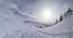 Snow in Valmalenco