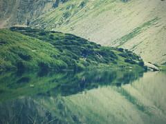 passeggiando attorno al lago nel bel mezzo dell'estate... (ghiro1234 []) Tags: verde lago switzerland ticino natura svizzera riflessi cava rifugio riflesso mucche ferragosto capanna utoe pascolo laghetti 2000m riflettere estate2013