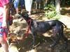 LakeWabanAug102008010