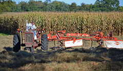Rake It (MTSOfan) Tags: autumn tractor field corn farmer
