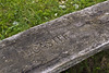 UpperNethanGorge000930131013 (tookiebunten) Tags: autumn trees 35mm iso100 woods nikon local f80 blackwood southlanarkshire 0125sec hpexif d3100 walkwithtookie uppernethangorge