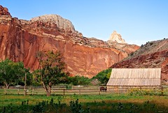 Capitol Reef (_GuillaumeL_) Tags: park trip usa beautiful landscape photography utah amazing october photographie album united olympus 63 capitol national states mm 12 guillaume 50 reef paysage zuiko omd 2012 f35 em5 my guill leparmentier toug lepar mtoug
