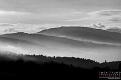 "Landscape • <a style=""font-size:0.8em;"" href=""http://www.flickr.com/photos/49106436@N00/10815881725/"" target=""_blank"">View on Flickr</a>"
