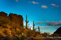 Gates Pass Sunset (tom911r7) Tags: leica sunset cactus sky mountains fall clouds rocks desert tucson saguro miraval gatespass tom911r7 thomasbrichta xvario