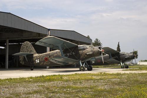 Y-5s Albania