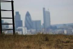 Saf's London