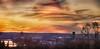 BASEL (stega60) Tags: trees sunset sky panorama skyline clouds landscape switzerland countryside scenery paisaje scene basel paysage landschaft rhein hdr basle messeturm región basilea bâle rocheturm flickrsfinestimages1 flickrsfinestimages2 stega60