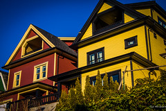 Vancouver Jan 14 - Strathcona Heritage Homes (Ted's photos - For me & you) Tags: houses windows shadow bird heritage yellow vancouver fence shingles peak bluesky hedge strathcona drainpipe vancouverbc eaves unionstreet eastvancouver dormers yews vancouvercity yewtrees heritagevancouver peakedroof cans2s tedsphotos vision:mountain=0777 vision:car=0594 vision:outdoor=0615 vision:sky=0798 vision:plant=0584 vision:dark=0551