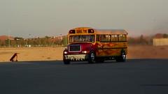 Al Ain AirShow-Sani 1250 (Luigi Sani) Tags: bus aviation airplanes uae jet airshow alain aerobatic emirati aerei wingwalkers