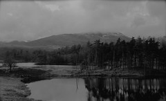 Tarn Hows Wood (Claire_Carey) Tags: blackandwhite nature water landscape lakes lakedistrict peaks tress tarnhowswood