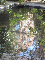 Pond relections (LindseyS2008) Tags: madrid pond refelections