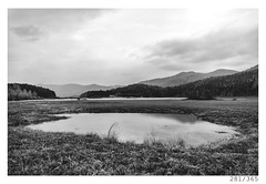 Cerknica lake (Aljaž Anžič Tuna) Tags: 281 281365 365 cerknica lake intermittent spring nature reflection clouds cloudysky grass karst photo365 project365 panorama onephotoaday onceaday 35mm 365challenge 365project d800 dailyphoto day dof bw blackandwhite black blackwhite beautiful white water woods hills nikond800 nikkor nice naturallight nikkor28mm 28mm 28mmf28 f28 forest monocrome monochrome