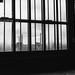 Zollverein VII