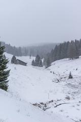 valley (SpotShot) Tags: sony a7 ilce7 sonya7 fe 50mm f18 50 sony50mmf18 sonyfe50mmf18 sel50f18f todtnau badenwürttemberg deutschland cold kalt snow schnee white weis valley tal view aussicht