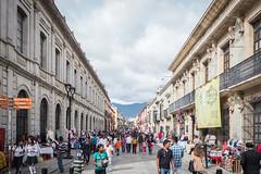 Oaxaca Day of the Dead Celebration-2