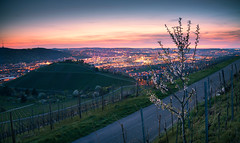 Spring breathes new life into the city - Stuttgart, Germany (Eric Steinbrücker) Tags: canon sony alpha 7 r ilce7r ilce7 deutschland germany baden württemberg ef f4l is usm stuttgart blue hour blaue stunde