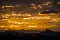 Sun Setting (Geoffsnaps) Tags: pretty beautiful nature natural goldcoast gold coast queensland australia backyard outdoor ilovenature attraction alive peaceful joyful joyous nikonnikkor200500mmf56eedvrafs lens telephoto nikon nikkor 200500mm f56e ed vr afs gitzogm5541carbonmonopod gitzo gm5541 carbon monopod acratechpanoramichead monopodhead acratech panoramic head