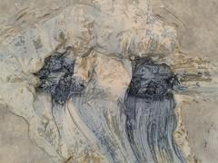 Waderprint (essex_mud_explorer) Tags: mud muddy mudflats creek estuary tidal riverthames tidalmud silt schlamm matsch footprints bootprints footprint bootprint prints trail trails waders watstiefel rubber boots thigh