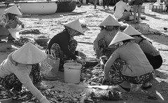People at the fish market in Phan Thiet, Vietnam (phuong.sg@gmail.com) Tags: basket bay beautiful boat business bustling buying carrying coastline collecting conical countries countryside crop crowd developing domination exchange fish fishermen fishing forage harbor hats indochina jetty marina market meal morning muine pelagic phanthiet pier prepared riding sail sea seafood selling stock strenuous teamwork vietnam village weight zone