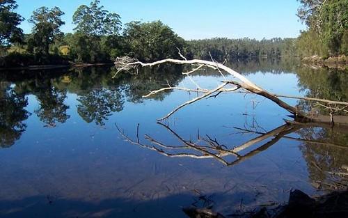 Lot 16 The River Road, Currowan NSW 2536