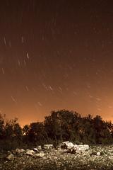 Circumpolar 1 (jorgeplanelles) Tags: stars circumpolar night dark light