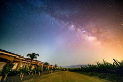 Lyra (jeffbrian) Tags: lyrids meteorshower night nightsky nightphotography nightscape winery temecula california longexposure