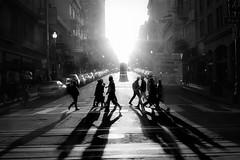 Street crossing (feldmanrick) Tags: streetphotography sanfrancisco street color candid blackandwhite bw monochrome people outdoor