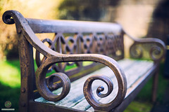 Bench with character (w.mekwi photography [here & there]) Tags: bokeh 50mmf14 dof paisley hbm character niftyfifty wmekwiphotography nikond800