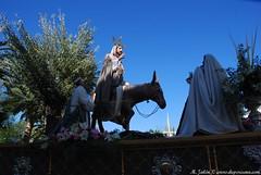 DSC_0089 (M. Jalón) Tags: borriquita semana santa porcuna domingo ramos procesión palmas 2017