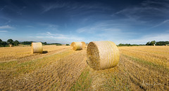 Harvest 3 (Alec Lux) Tags: aleclux cassel france agriculture bales blue dry field harvest landscape nature round sky straw sunny yellow