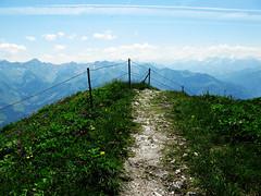Mountain At My Gates (NFW) Tags: switzerland suisse svizzera summer eternal grass flowers
