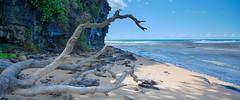 Coledale Beach (Regor.1010) Tags: beach hdr canon tiltshift 5d seaside australia nsw coledale