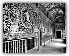 Jardín del Paraíso (polopqm) Tags: malinalco mexico pintura convento cultura