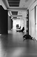 Flat (DanLeeGreen) Tags: street kl malaysia candid bw monochrome kualalumpur kuala trix 800 50mm ae1 canon film analogue people homeless poor poverty push d76 danleegreen mono arte black white blackandwhite