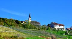 Village de Champvent (Diegojack) Tags: champvent vaud suisse village vaudois eglise colline