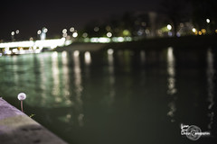 Flower in the City (Lonely Soul Design) Tags: paris river reflection seine bir hakeim dandelion city nightscape bokeh
