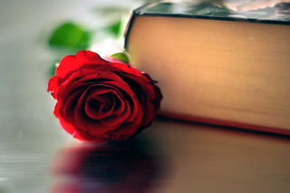 I would touch a familiar book and draw its fragrance deep inside me....