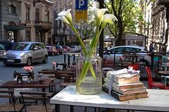 Zona II (salaminijo) Tags: street ulica topličinvenac palace flower jar tegla cveće books knjige beograd belgrade atmospheric garden bašta cars automobili bokeh lighhts canon eos markiii 1d ef28135mm