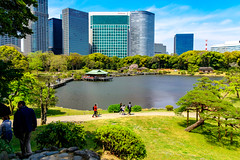 At Hama-rikyu Gardens in Tokyo : 浜離宮恩賜庭園にて (Dakiny) Tags: 2017 spring april japan tokyo chuo chuoward park garden hamarikyugardens city street outdoor lanscape people architecture japanesearchitecture water pond nikon d7000 sigma 1770mm f284 dc macro os hsm sigma1770mmf284dcmacrooshsm nikonclubit