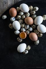 (CarolienCadoni..) Tags: sonyslta99 50mmf14 eggs bokeh dof light photography still stilllife