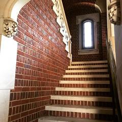Seventy-nine hall steps (Denis Gobo) Tags: princeton princetonuniversity newjersey steps