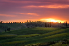 A9905086_s (AndiP66) Tags: sonnenuntergang sunset sonne sun evening abend april spring 2017 siena sanquiricodorcia valledorcia valle dorcia toscana tuscany italien italy pienza sony alpha sonyalpha 99markii 99ii 99m2 a99ii ilca99m2 slta99ii tamron tamronspaf70200mmf28dildif tamron70200mm 70200mm f28 amount andreaspeters
