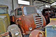 alfa romeo 950 (riccardo nassisi) Tags: collezione righini rust rusty scrapyard collection camion truck ruggine epave alfa romeo 950 900 fiat old car auto