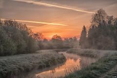 Sunrise (Martine Lambrechts) Tags: sunrise landscape nature fog waterway tree