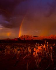 Over the rainbow. (aaronvonhagen) Tags: sossusvlei namibia africa rainbow travel travelphotography vancouverphotographer wanderlust adventureisoutthere skyporn clouds canon 5dmarkiii colours sunset beautiful